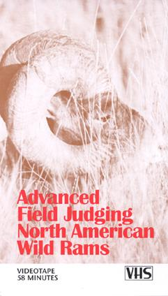 Duncan Gilchrist's Advanced Field Judging Wild Rams