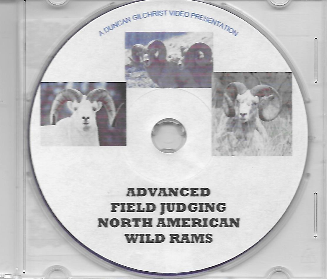 Duncan Gilchrist Advanced Field Judging North American Wild Rams
